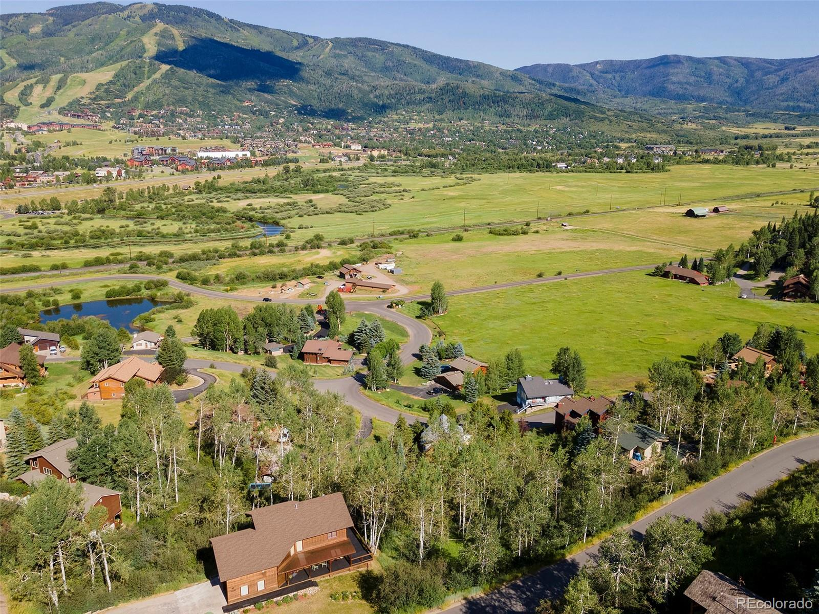 36817 Tree Haus Drive Property Photo - Steamboat Springs, CO real estate listing