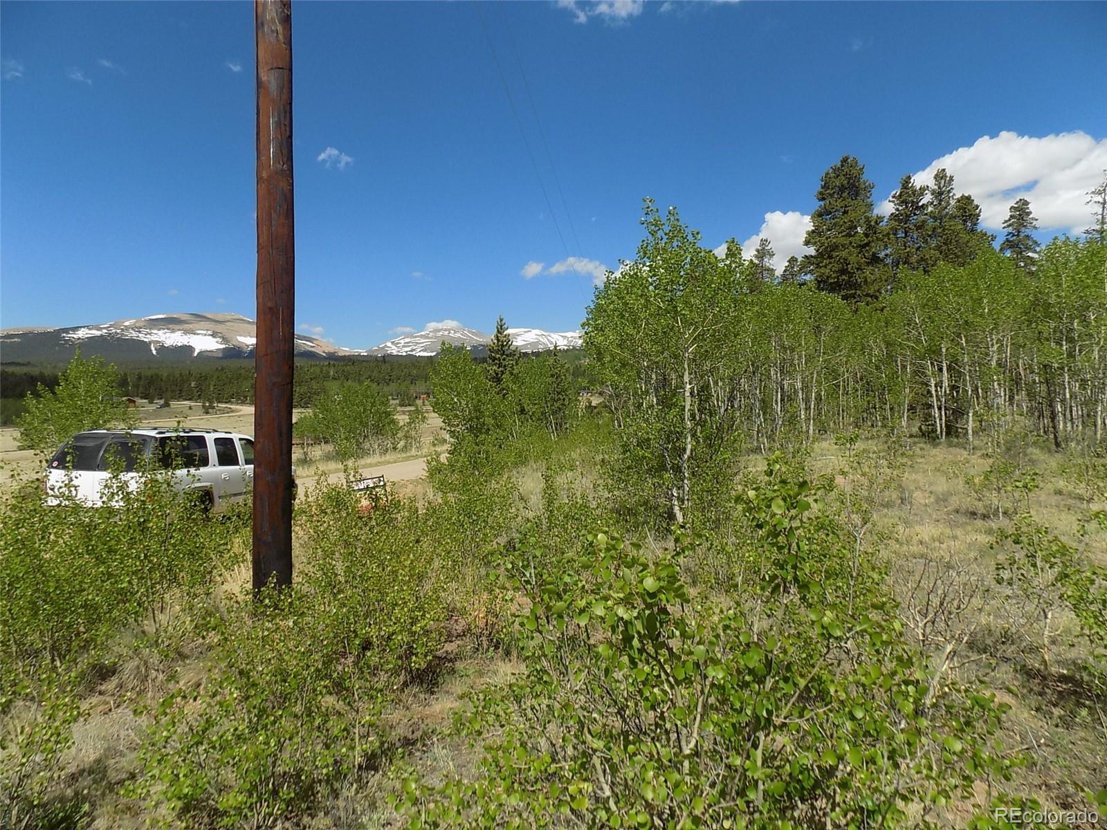 00 Foxtail Court Property Photo - Fairplay, CO real estate listing