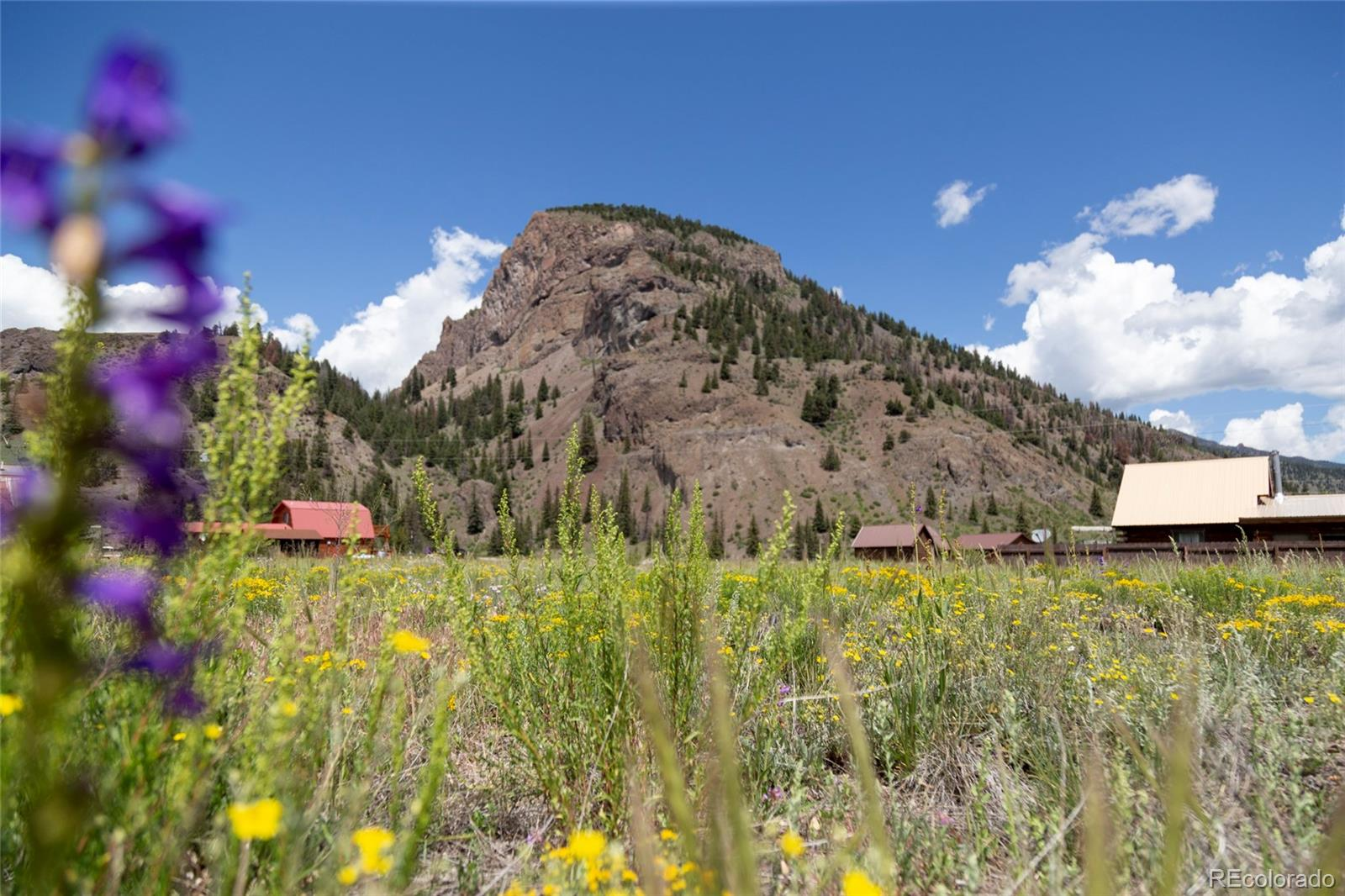 471 W Pine Drive Property Photo - Creede, CO real estate listing