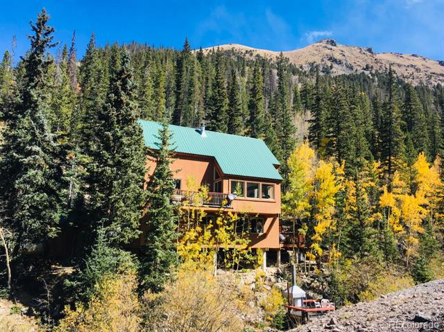 1781 Stevens Gulch Road Property Photo - Silver Plume, CO real estate listing