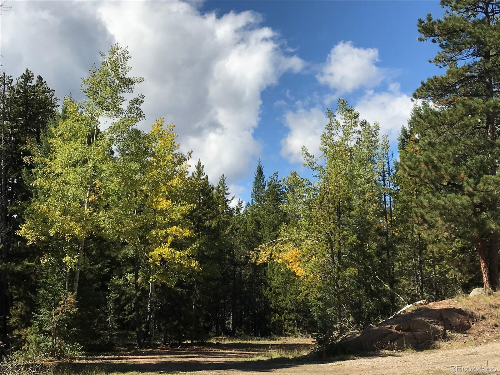 7290-2 Timbertrail Road Property Photo - Evergreen, CO real estate listing
