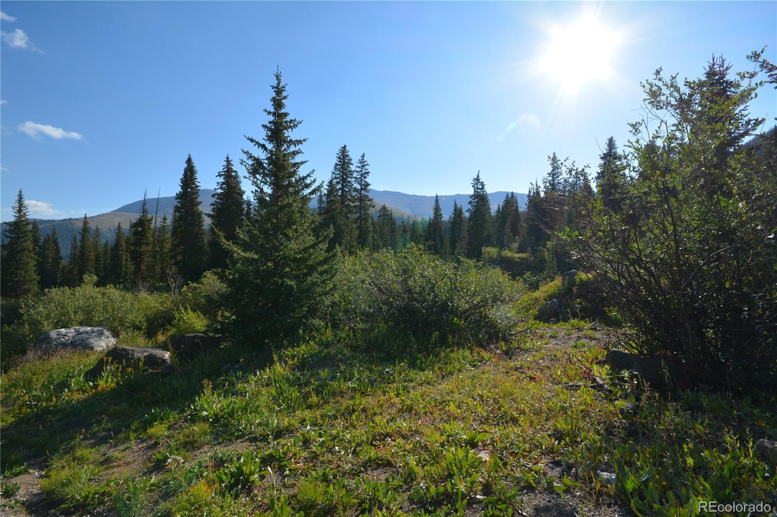 CR 671, Breckenridge, CO 80424 - Breckenridge, CO real estate listing