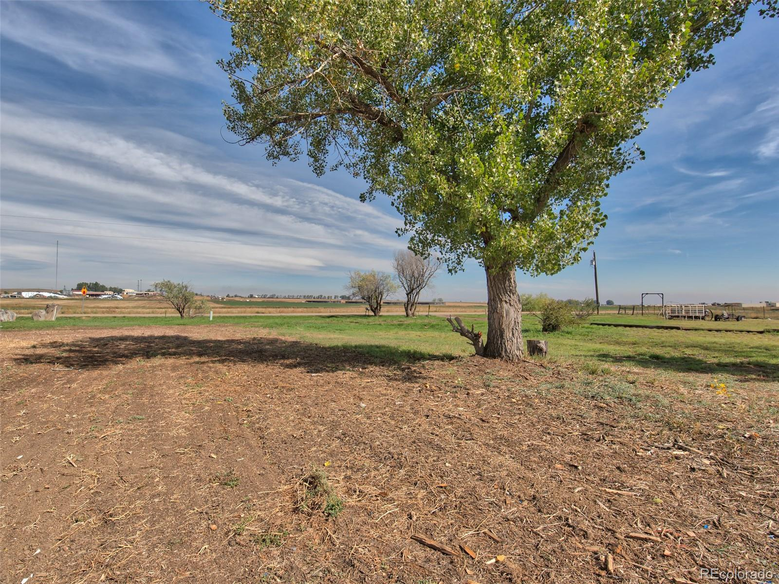 3171 County Road 6 Property Photo - Erie, CO real estate listing