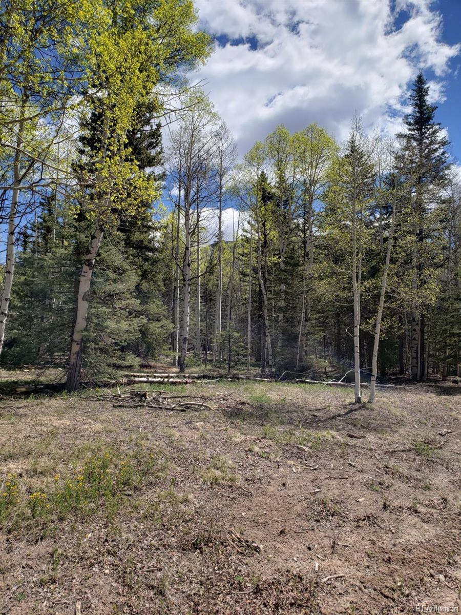 Vacant Land, Jasper, CO 81132 - Jasper, CO real estate listing