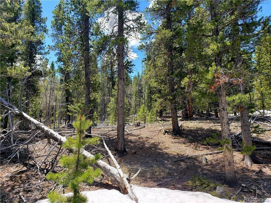 56 Peaceful Court Property Photo - Fairplay, CO real estate listing