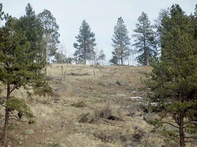 0 LOT 9 Lions Head Ranch Property Photo - Pine, CO real estate listing