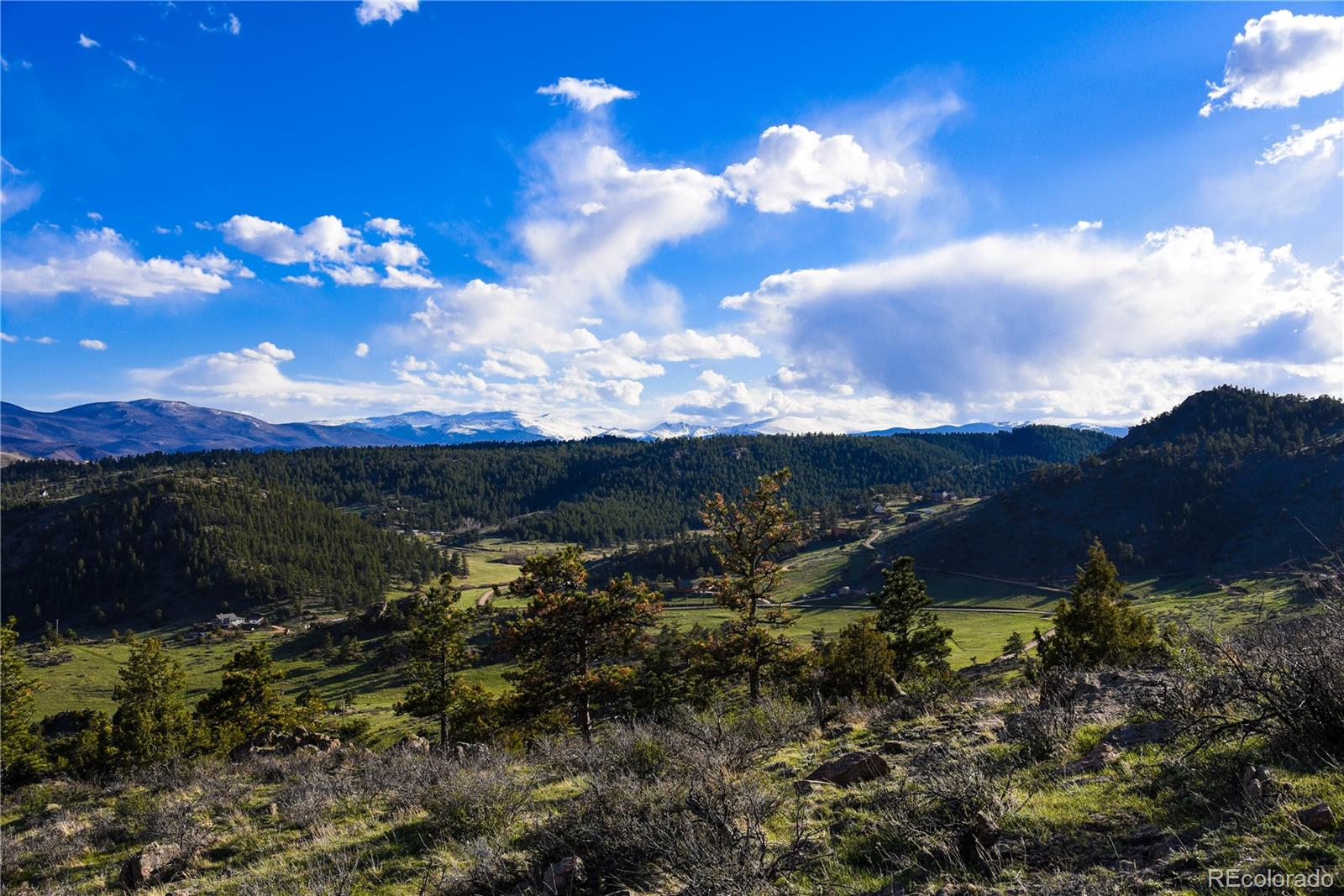 0 Simoncrest Drive Property Photo - Livermore, CO real estate listing