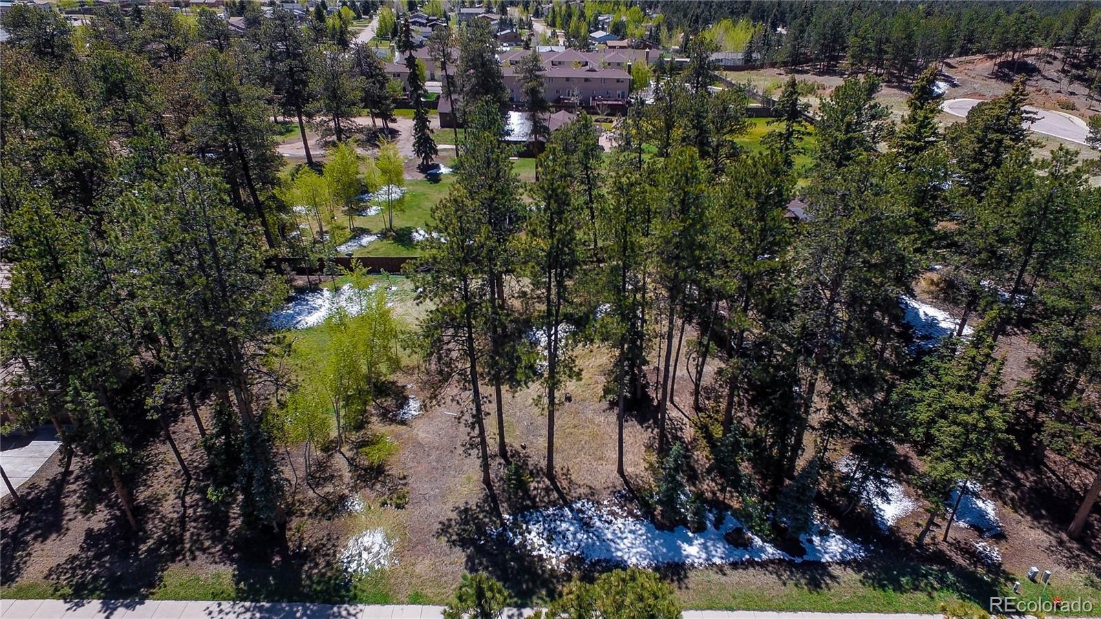 635 Meadowlark Lane Property Photo - Woodland Park, CO real estate listing
