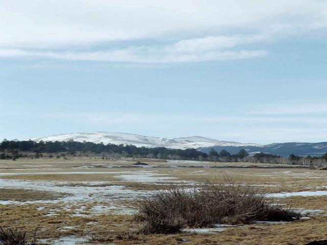0 LOT 8 Lions Head Ranch Property Photo - Pine, CO real estate listing