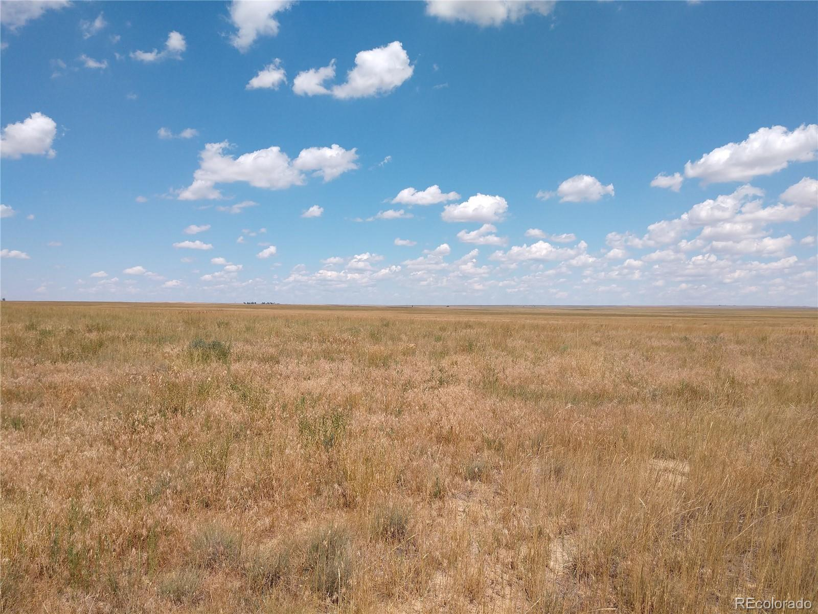 0 County Road 76 Property Photo - Briggsdale, CO real estate listing