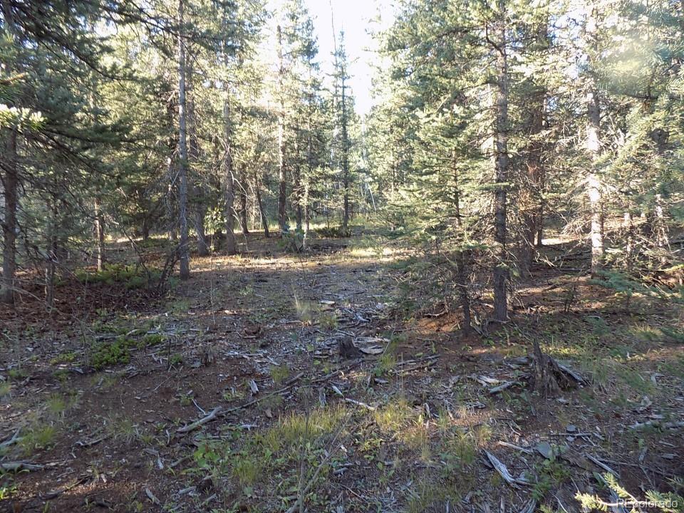 180 Indian Mountain Court Property Photo - Como, CO real estate listing