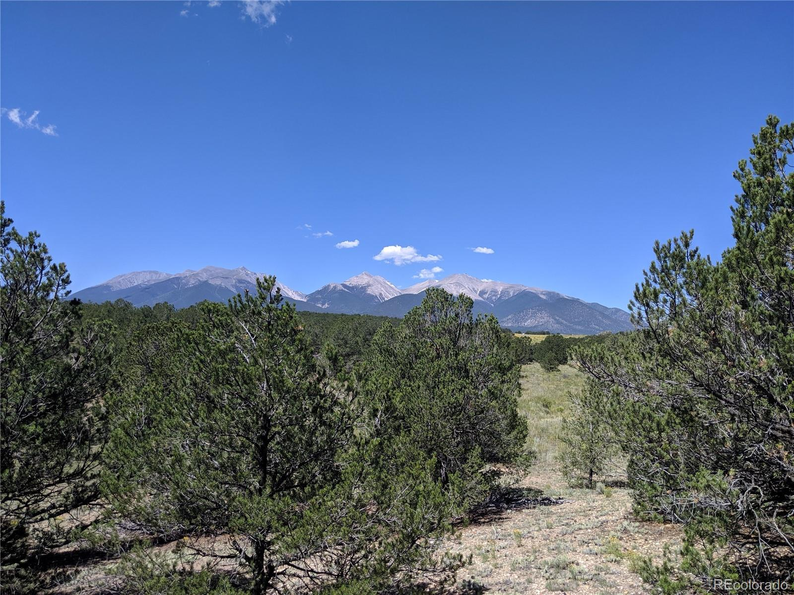 Lot 31 Property Photo - Nathrop, CO real estate listing