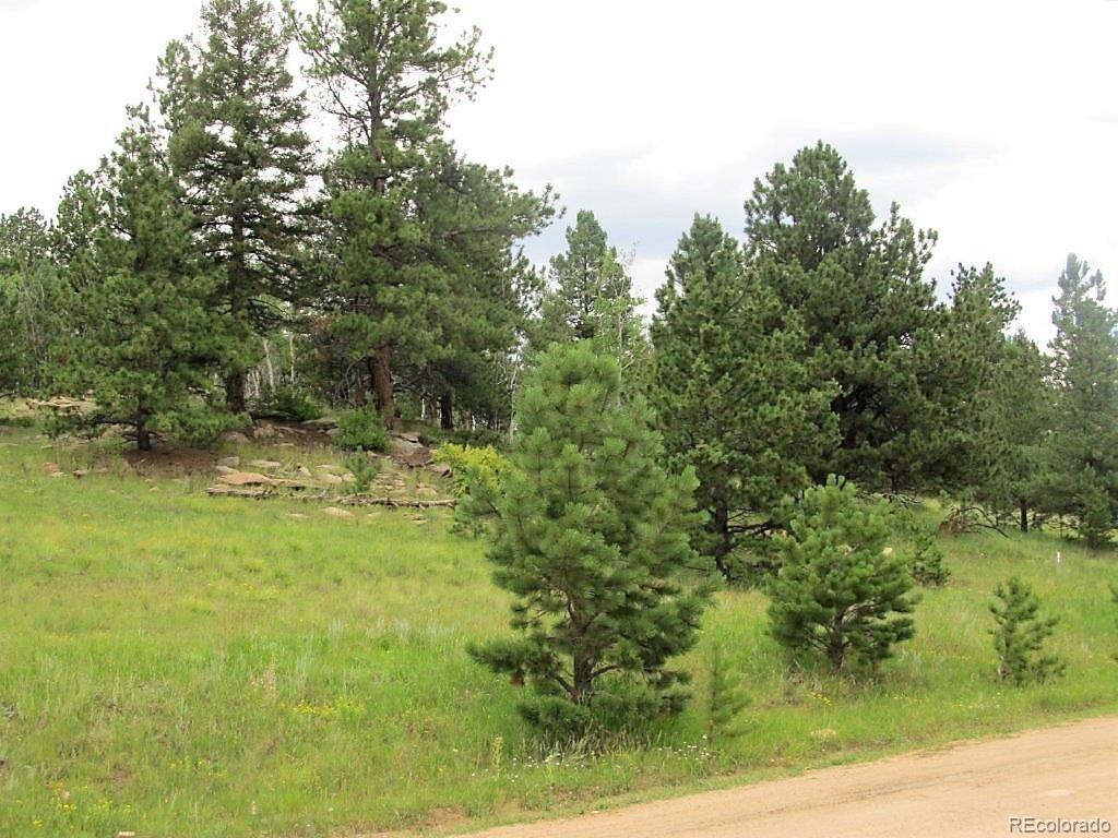 69 Hidden Valley Drive Property Photo - Florissant, CO real estate listing
