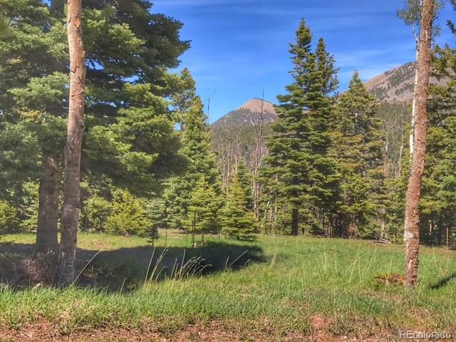 Valley Vista Property Photo - Cuchara, CO real estate listing