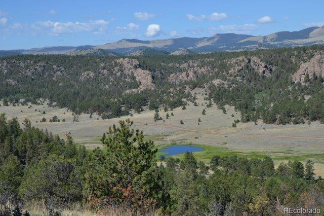 92 Star Gate Heights Property Photo - Florissant, CO real estate listing