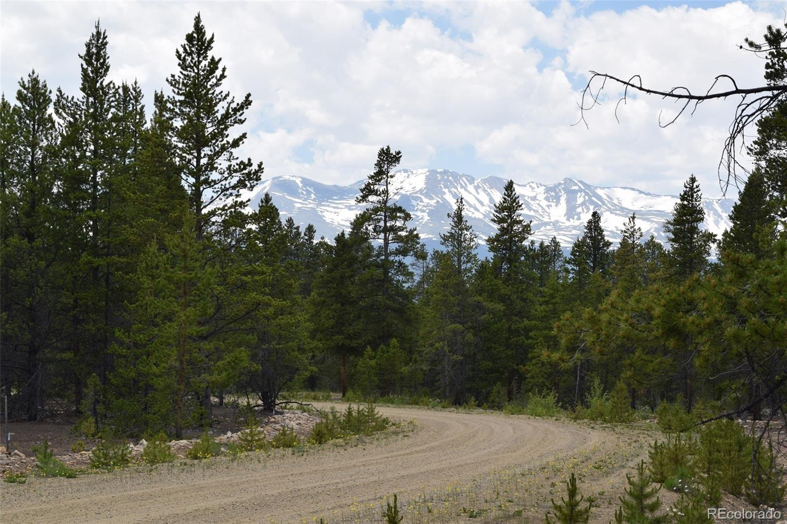 201 Snowshoe Rabbit Drive, Leadville, CO 80461 - Leadville, CO real estate listing