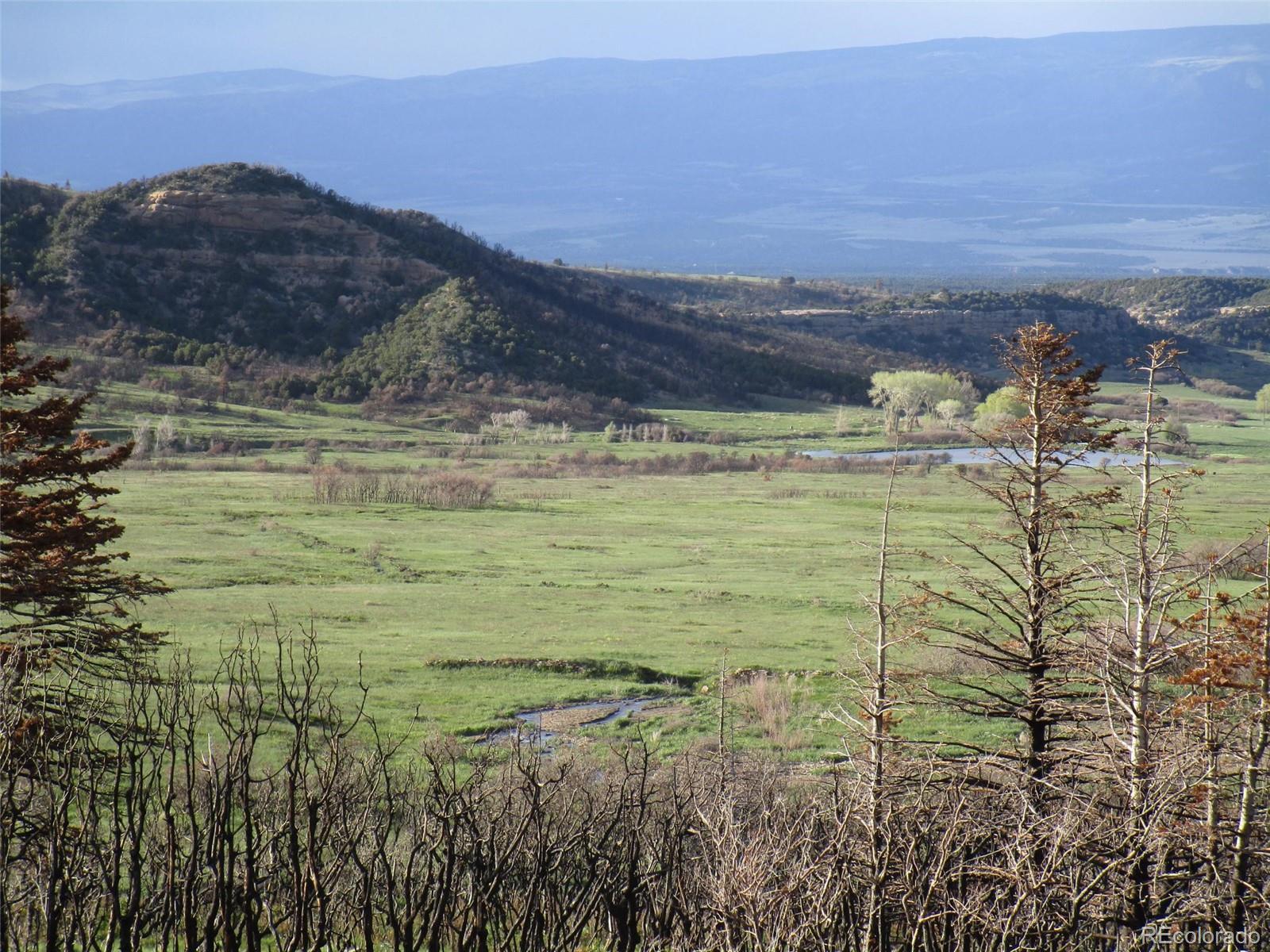 14 Yellowstone Creek Property Photo - Trinidad, CO real estate listing
