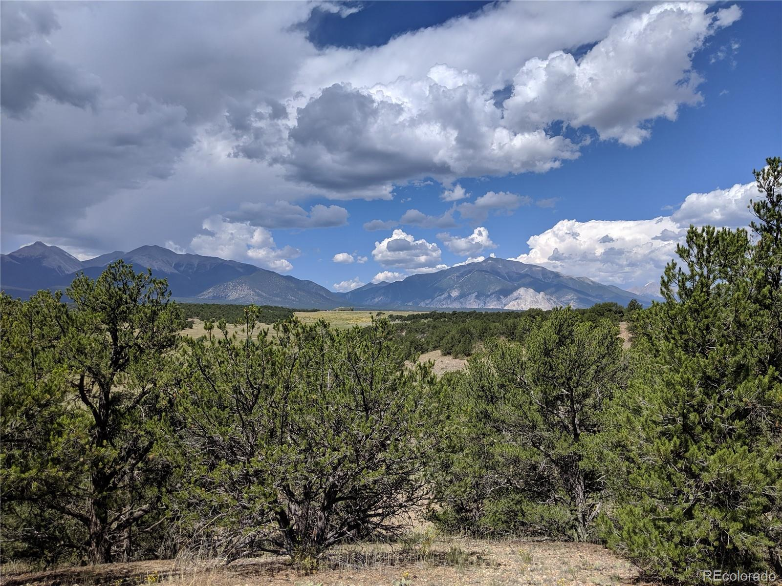 Lot 54 Property Photo - Nathrop, CO real estate listing