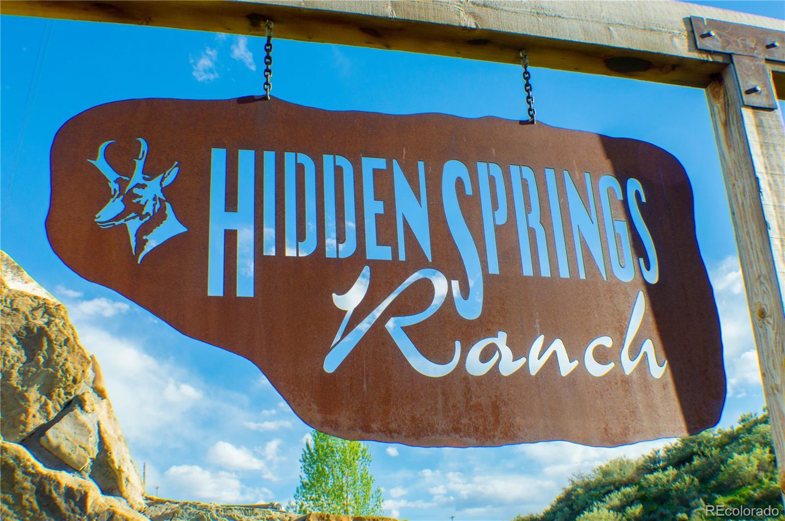 38625 Hidden Springs Drive Property Photo - Hayden, CO real estate listing