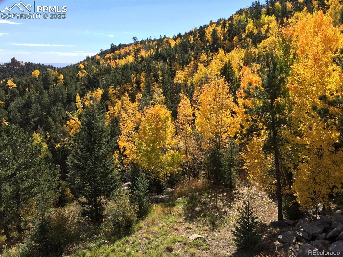 238 Waterfall Loop Property Photo - Manitou Springs, CO real estate listing