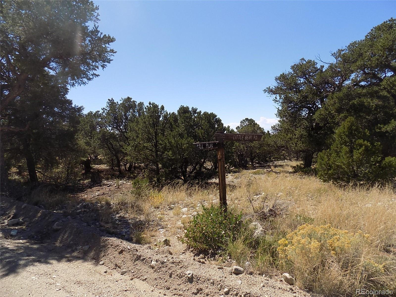 Little Bear Road Property Photo - Mosca, CO real estate listing