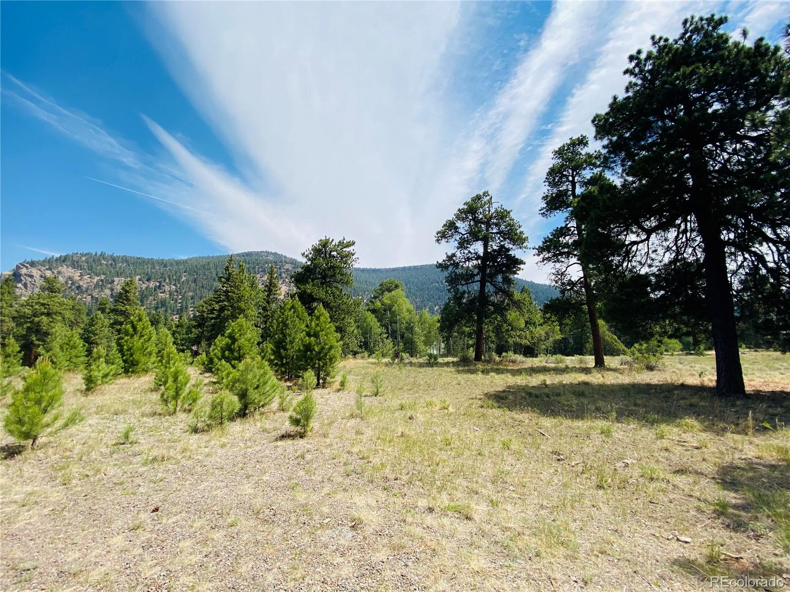 133 Canyon View Drive Property Photo - Antonito, CO real estate listing