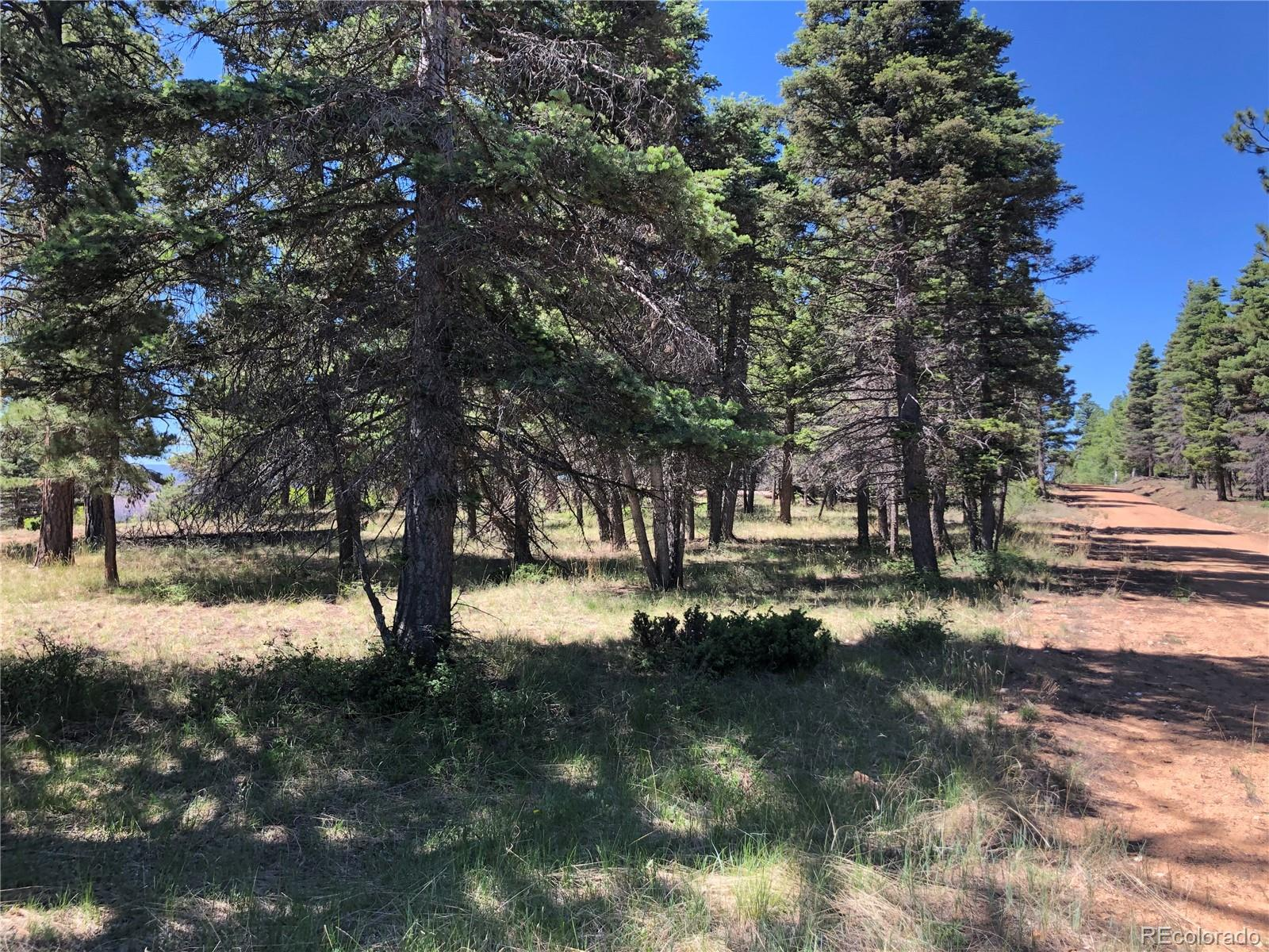 231 Tahmoush Lane Property Photo - Fort Garland, CO real estate listing