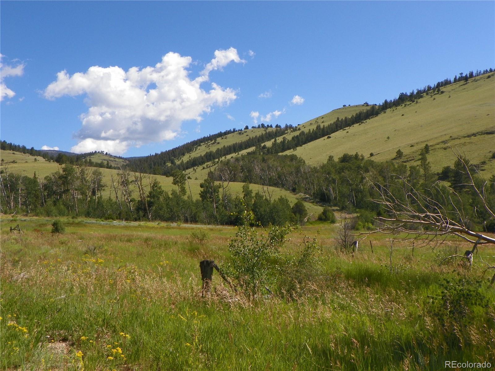 324.29 Acres Property Photo - Saguache, CO real estate listing