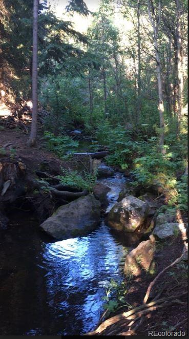 Skye Creeks Way Property Photo - Golden, CO real estate listing