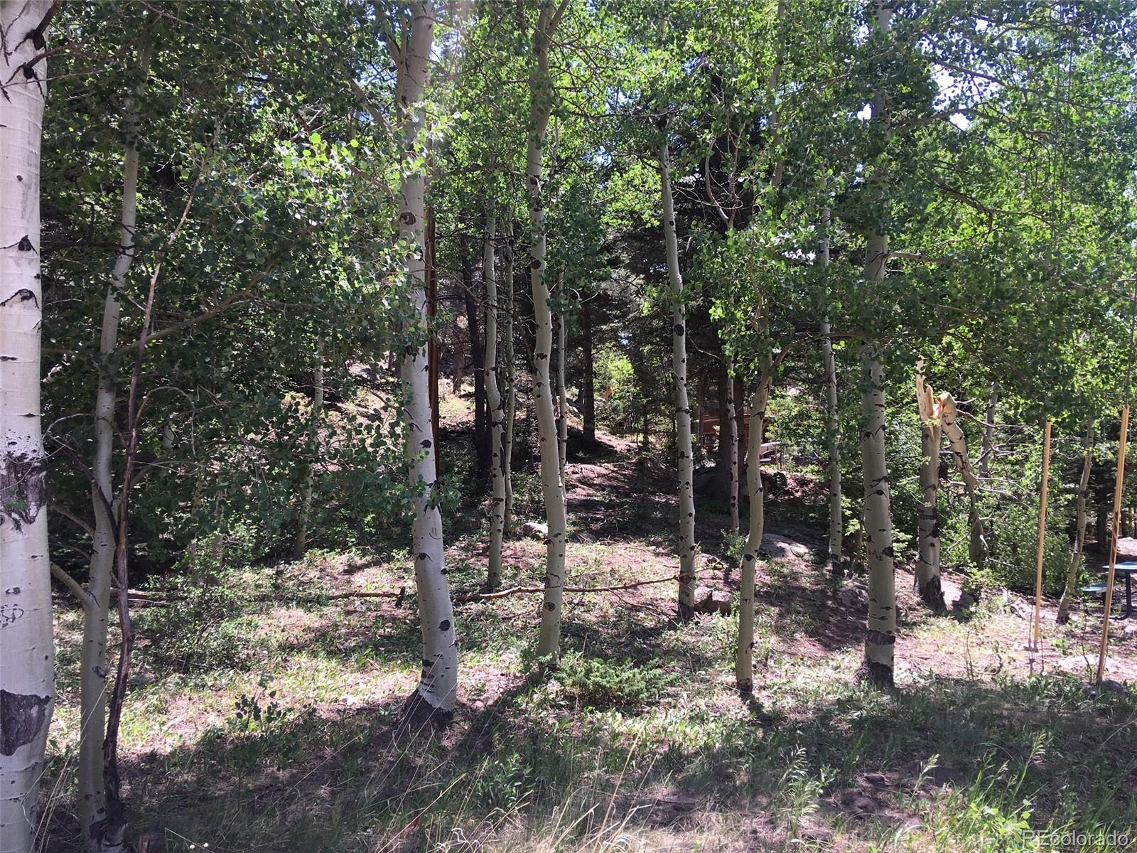 TBD Aspen Road Property Photo - Cuchara, CO real estate listing