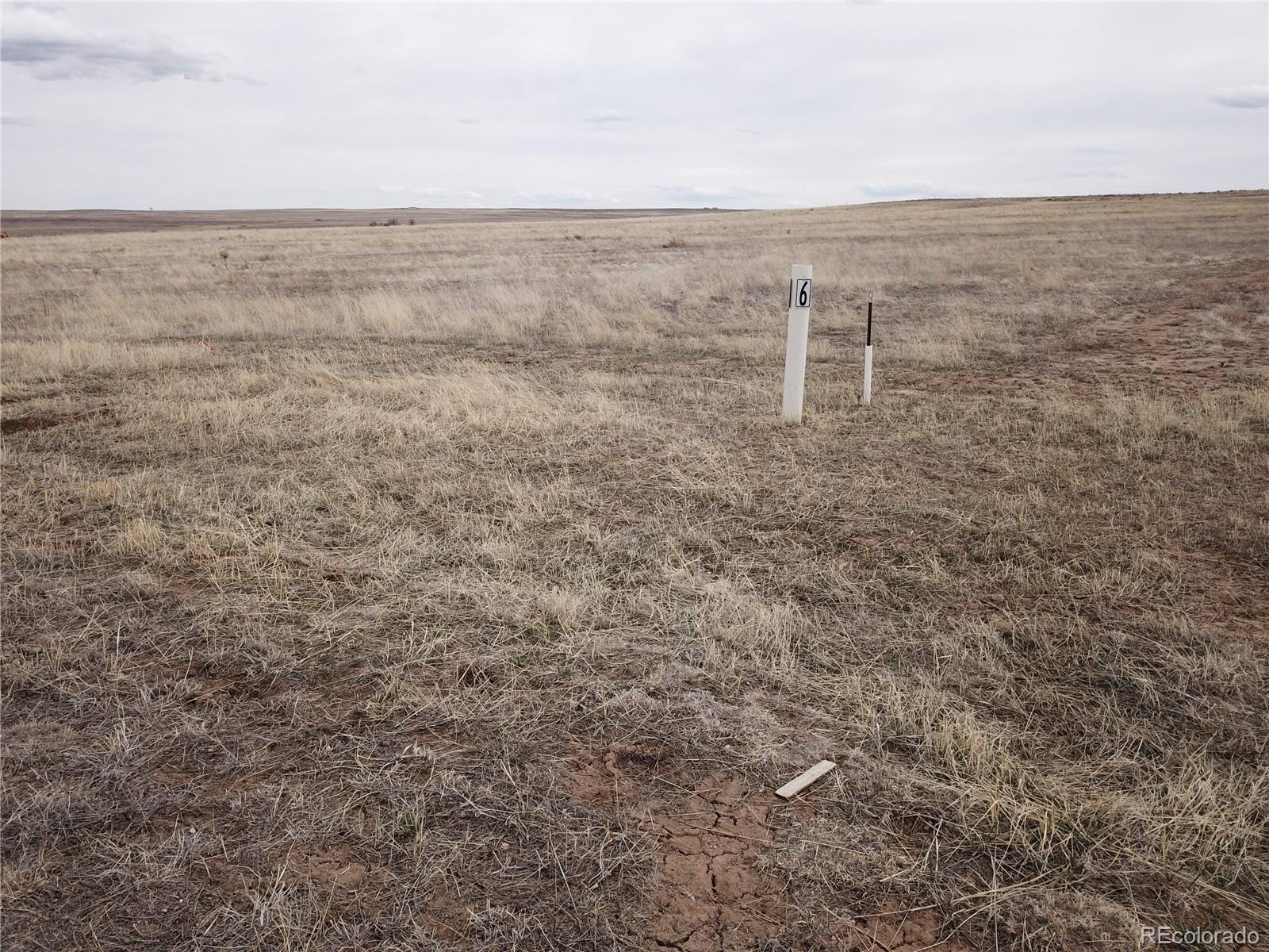 13382 Antelope Pasture Point Property Photo - Kiowa, CO real estate listing