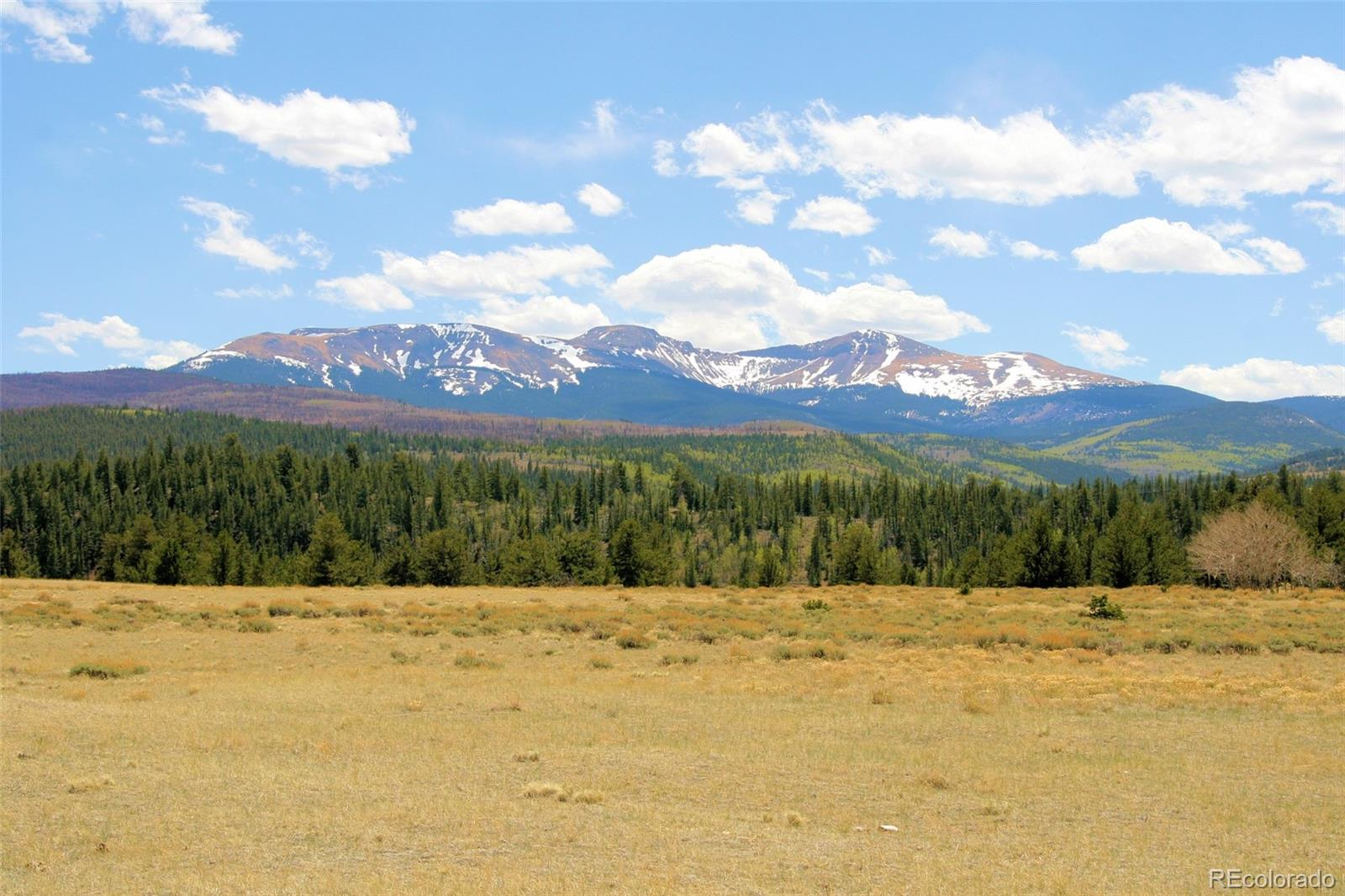 Willow Creek Lane Property Photo - Fairplay, CO real estate listing