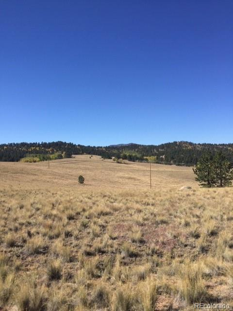 230 Steel Bit Drive Property Photo - Florissant, CO real estate listing