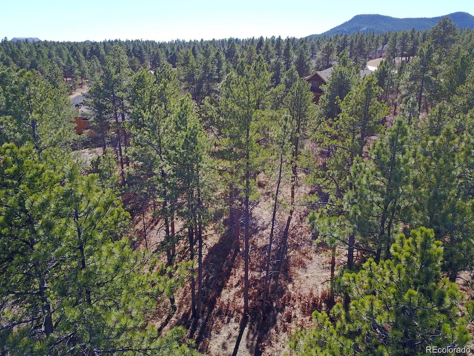 606 Cumberland Road Property Photo - Larkspur, CO real estate listing