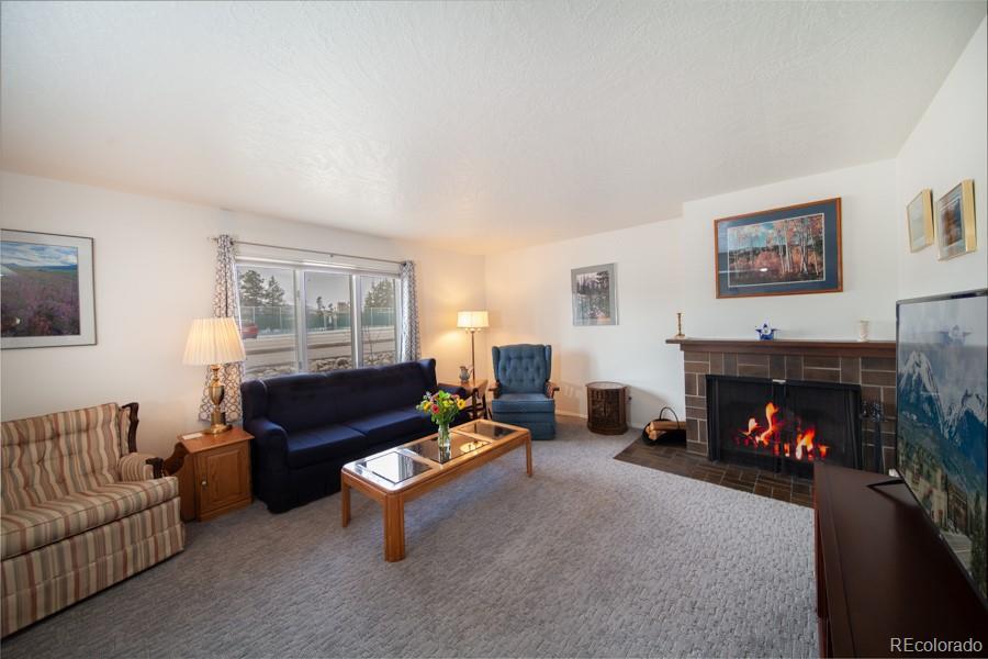 240 E La Bonte Street #29 Property Photo - Dillon, CO real estate listing