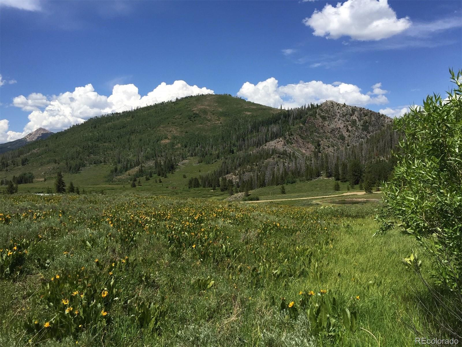 Jim Beam Place Property Photo - Clark, CO real estate listing