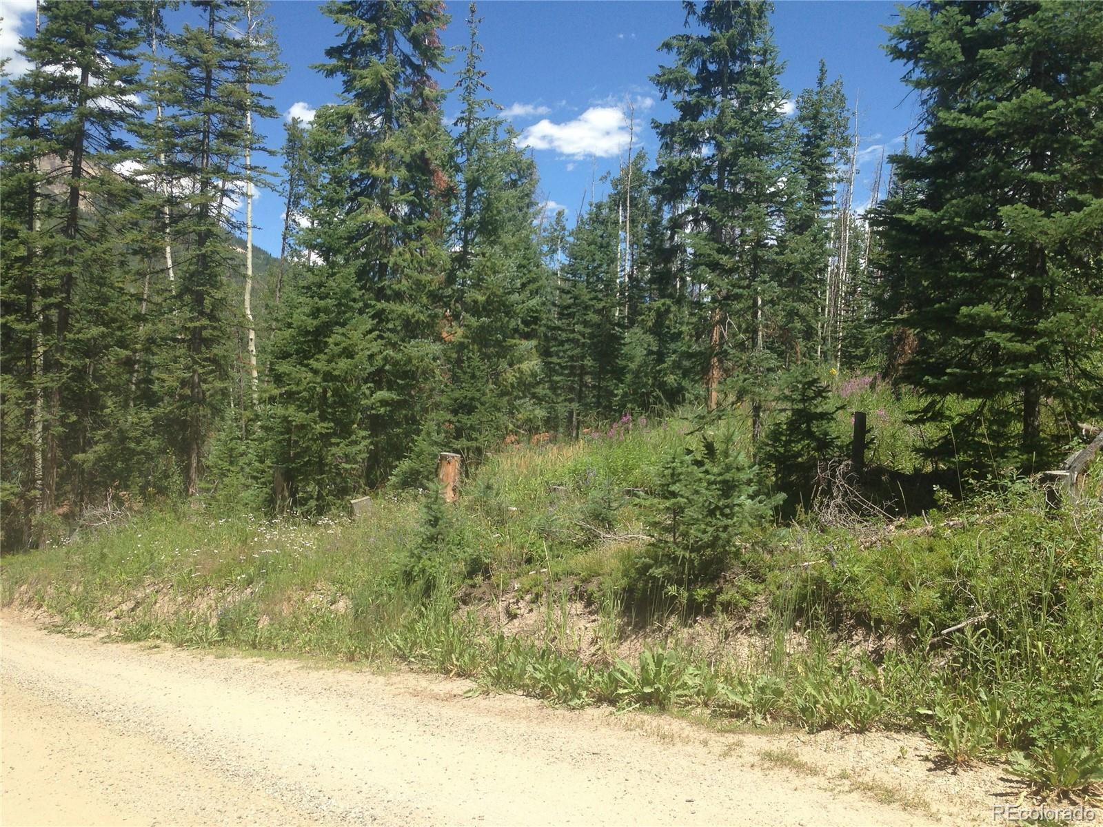 Hill Street Property Photo - Hahns Peak, CO real estate listing
