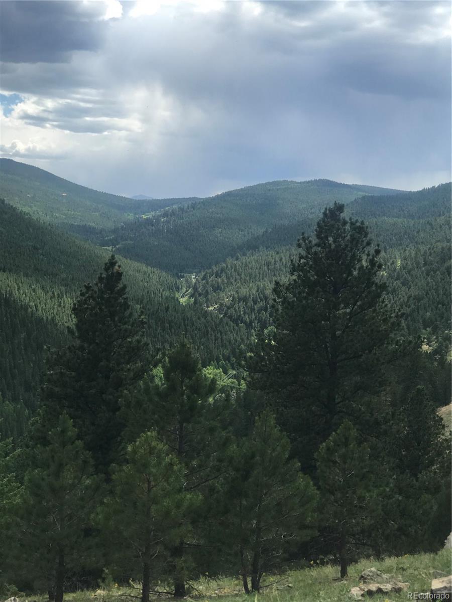 8467 Spirit Horse Trail Property Photo - Golden, CO real estate listing
