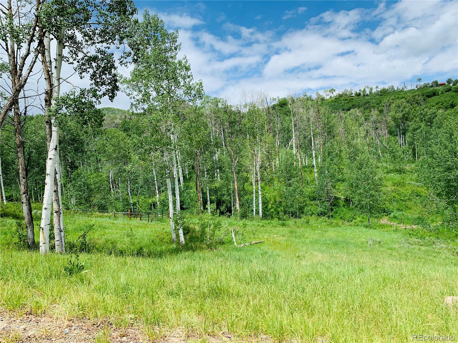 56025 Hannahs Way Property Photo - Clark, CO real estate listing