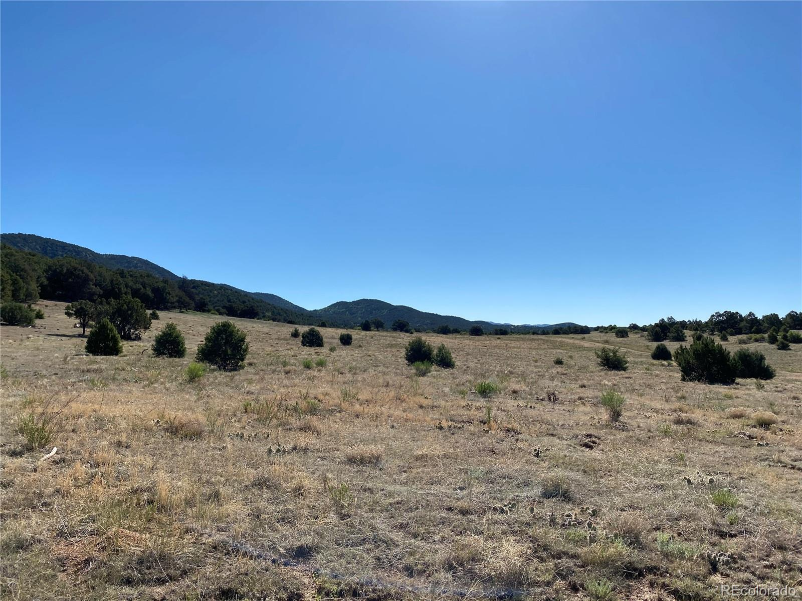 1-3 Rye Whiskey Trail Property Photo - Canon City, CO real estate listing
