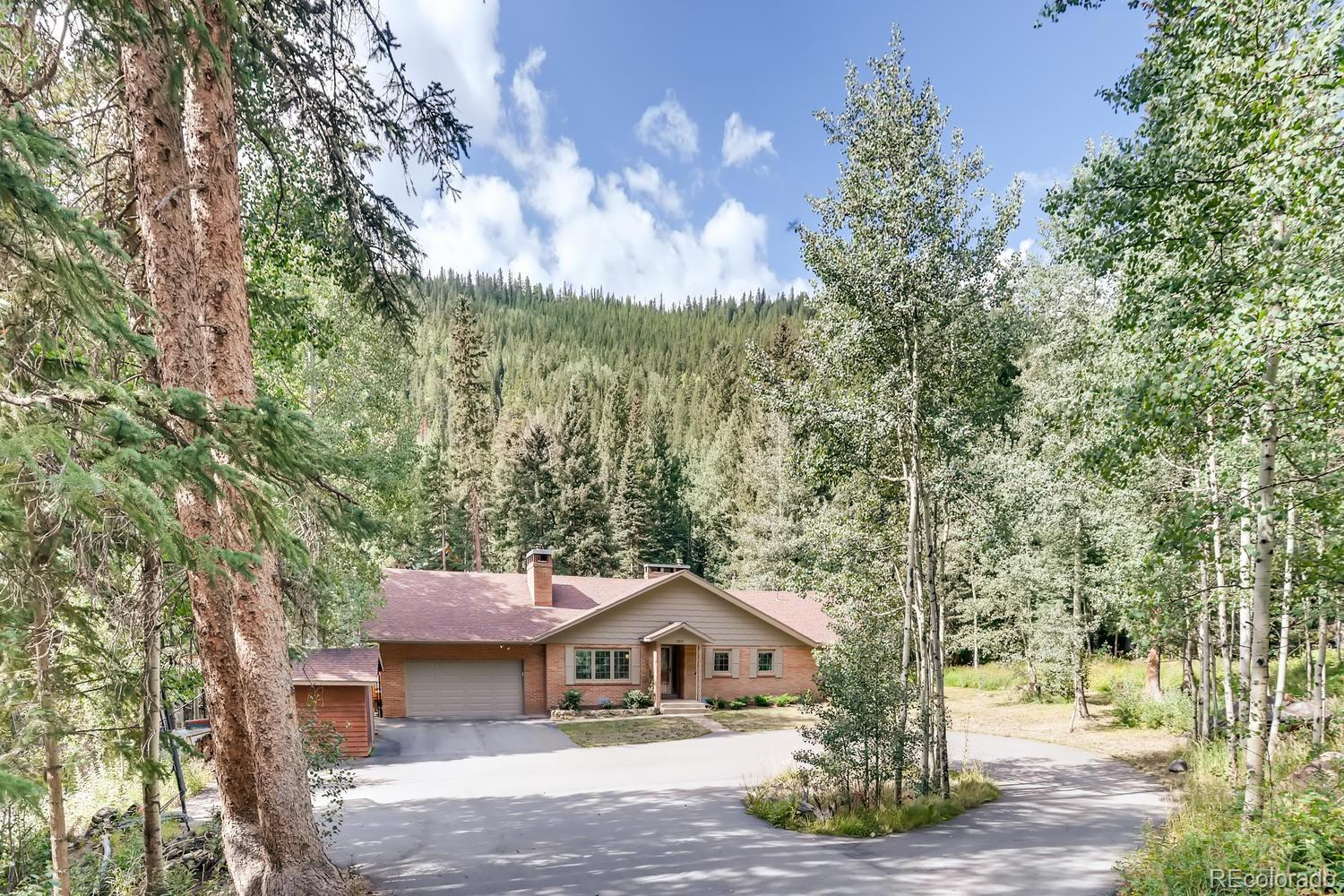 2831 Mill Creek Road Property Photo - Dumont, CO real estate listing