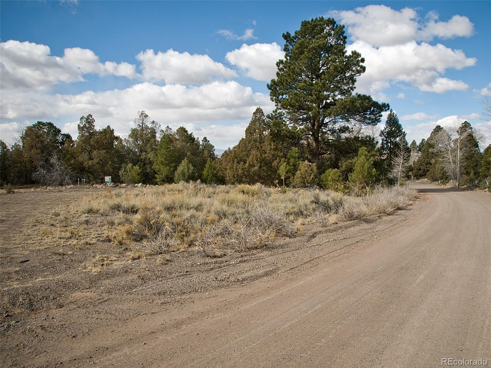 1560 Antelope Way Property Photo - Crestone, CO real estate listing