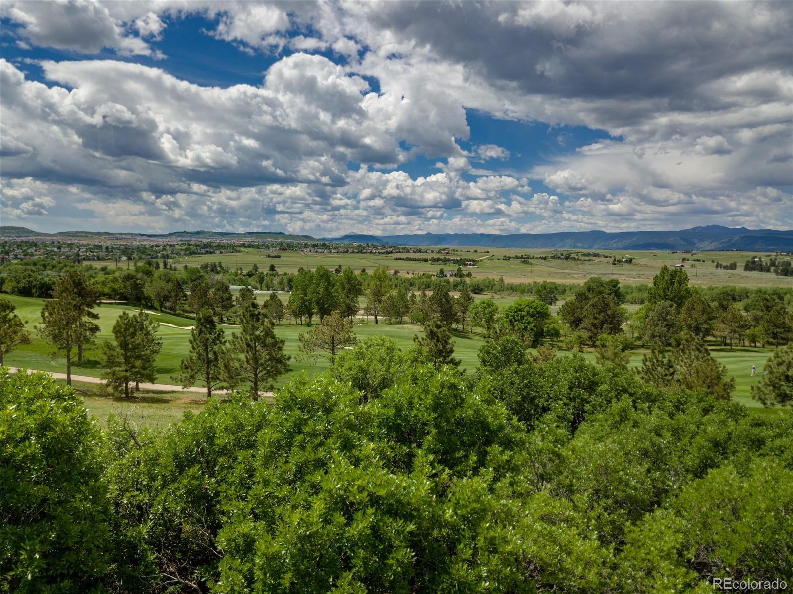 783 International Isle Drive Property Photo - Castle Rock, CO real estate listing