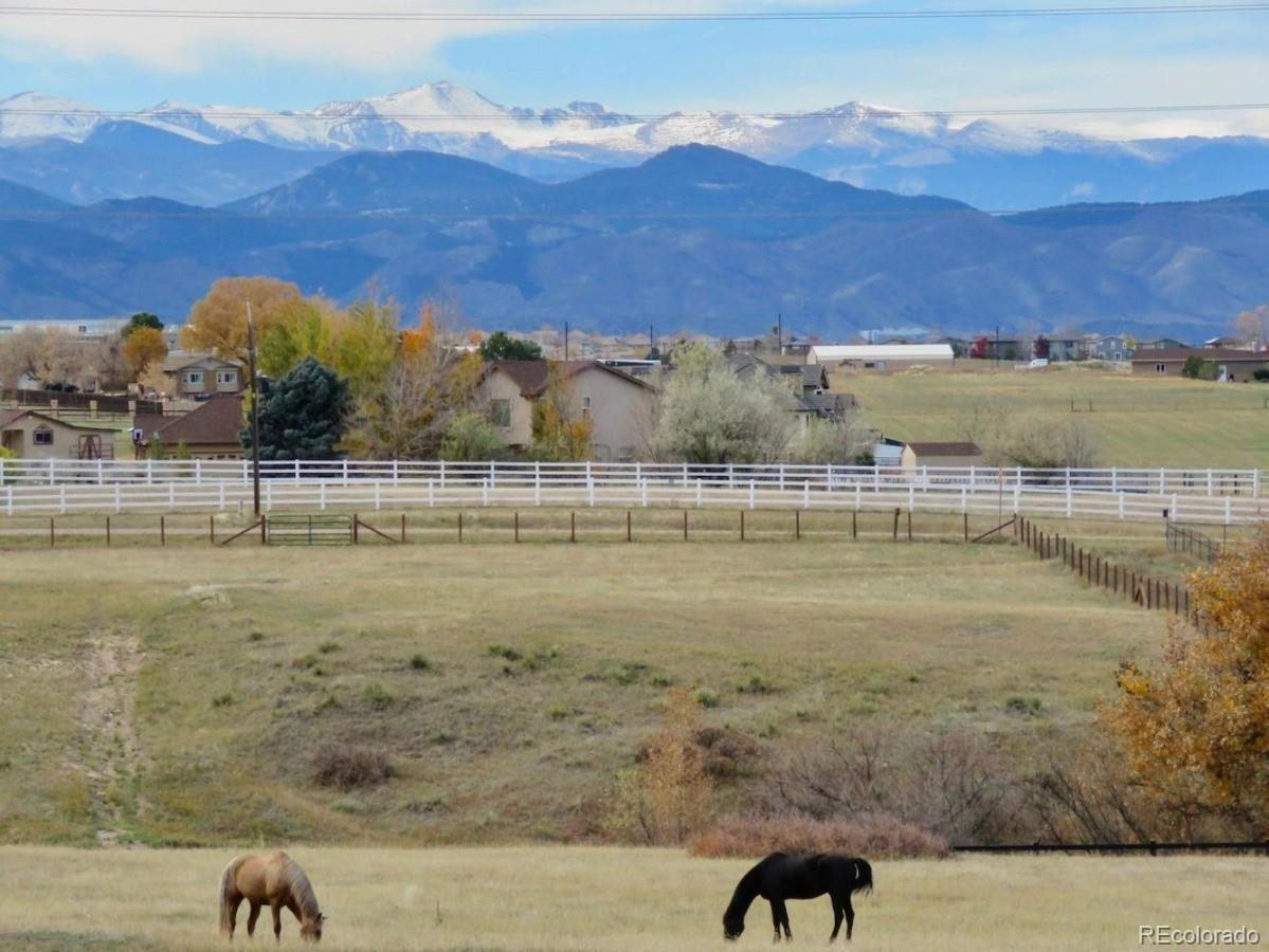 Lone Tree Real Estate Listings Main Image
