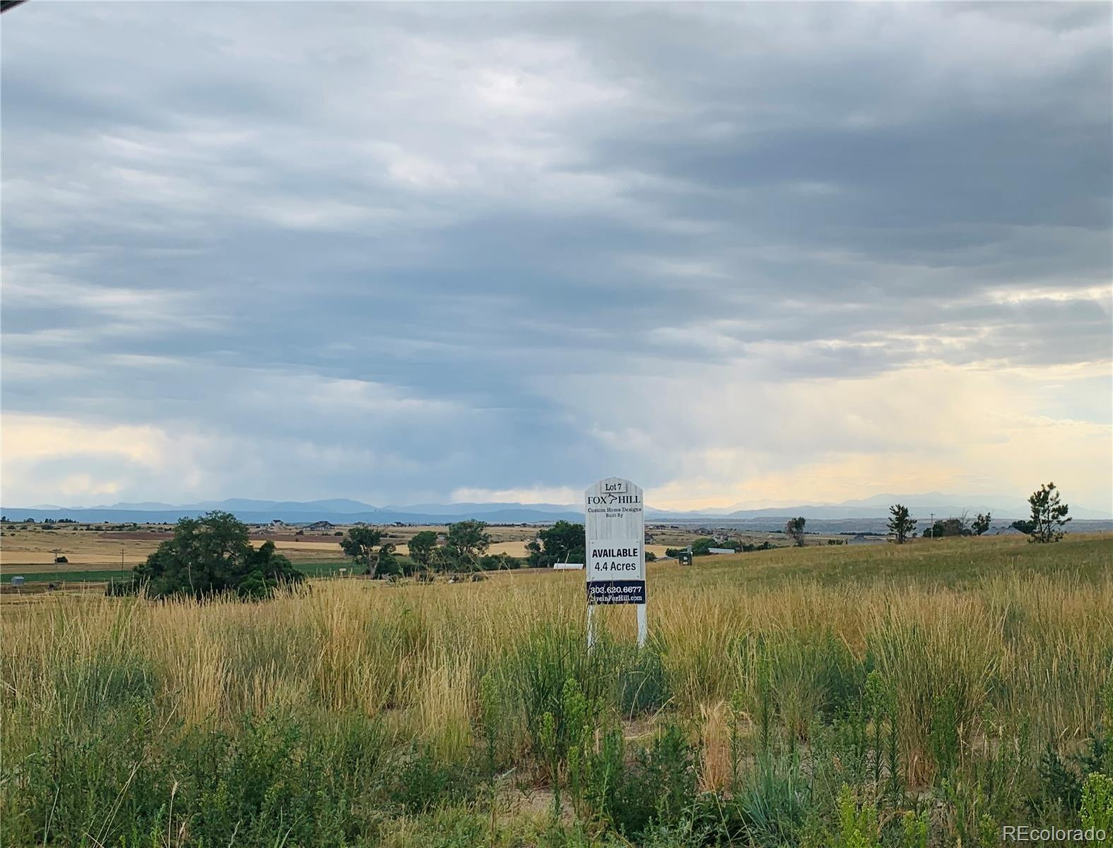 3166 Red Kit Road Property Photo - Franktown, CO real estate listing