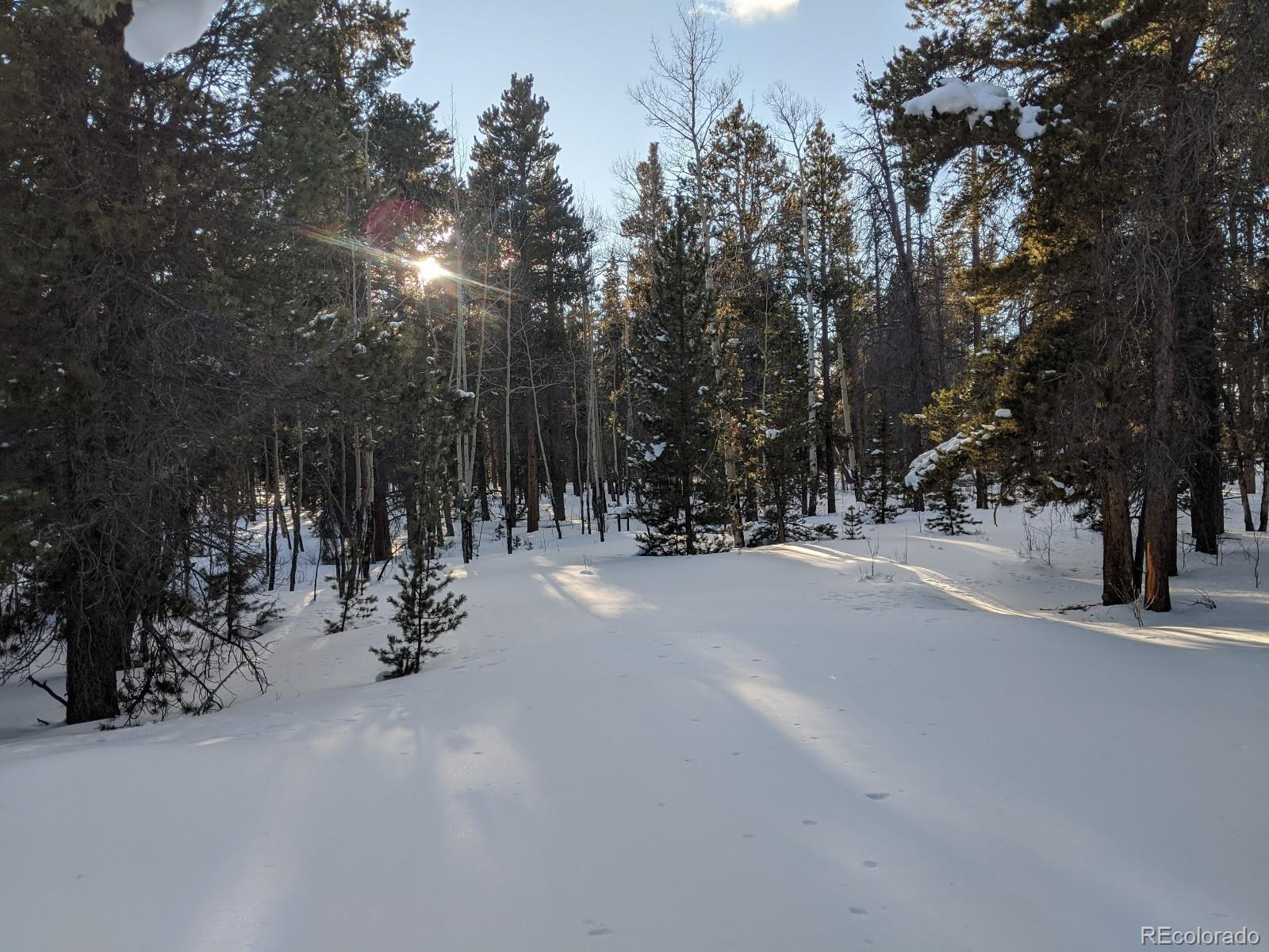660 Rockwell Renshaw Road Property Photo - Fairplay, CO real estate listing