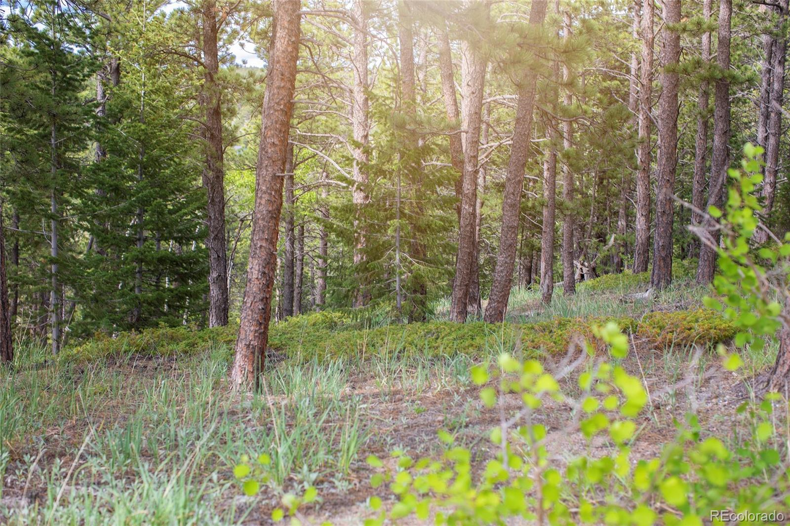 St Vrain Road Property Photo - Lyons, CO real estate listing