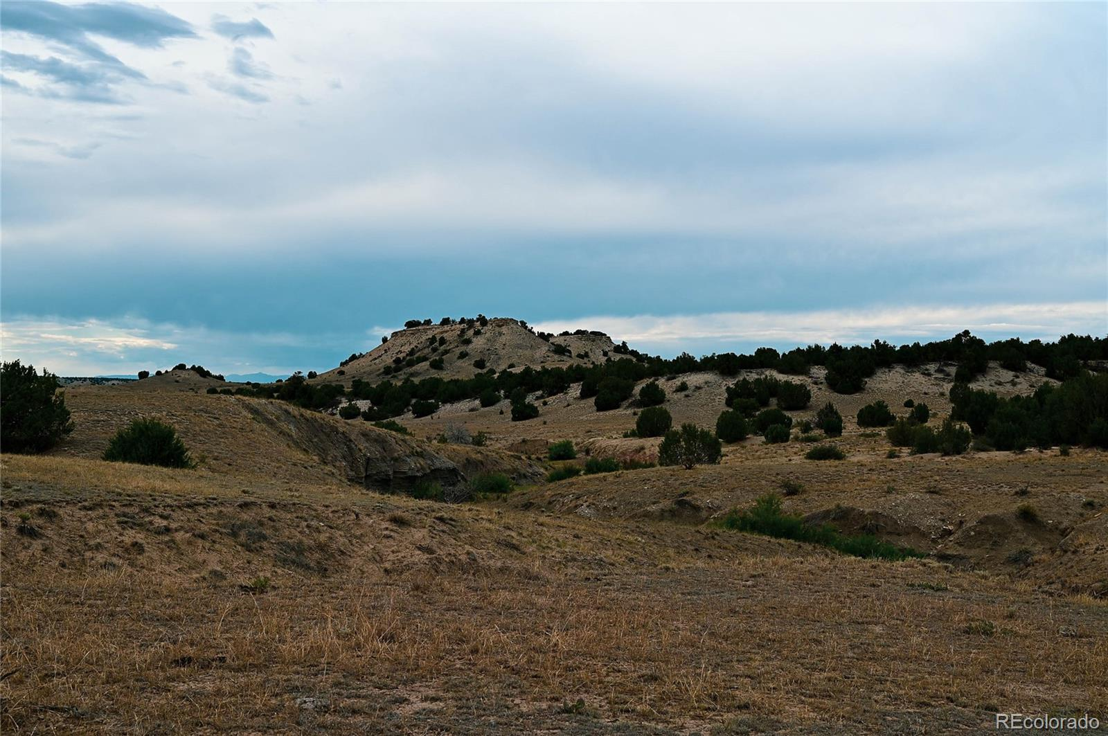 Lot 22 Mallory Property Photo - Pueblo, CO real estate listing
