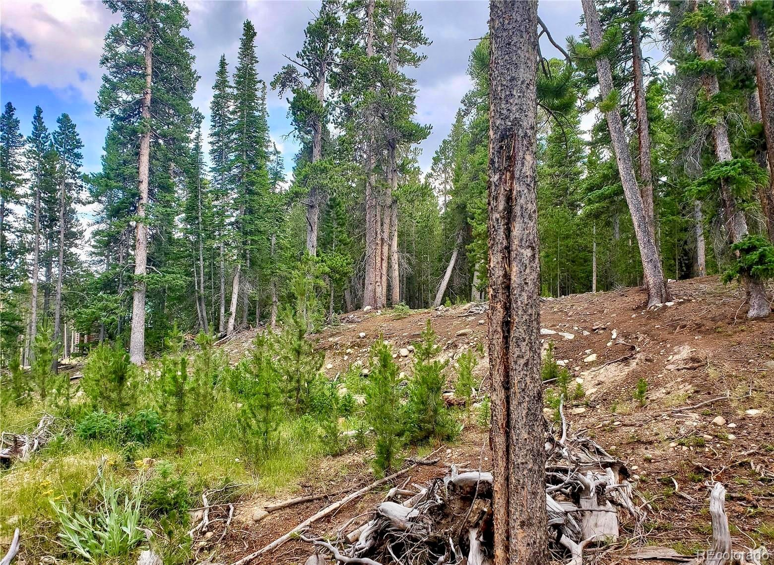 188 Gold Trail Cutoff Property Photo - Fairplay, CO real estate listing