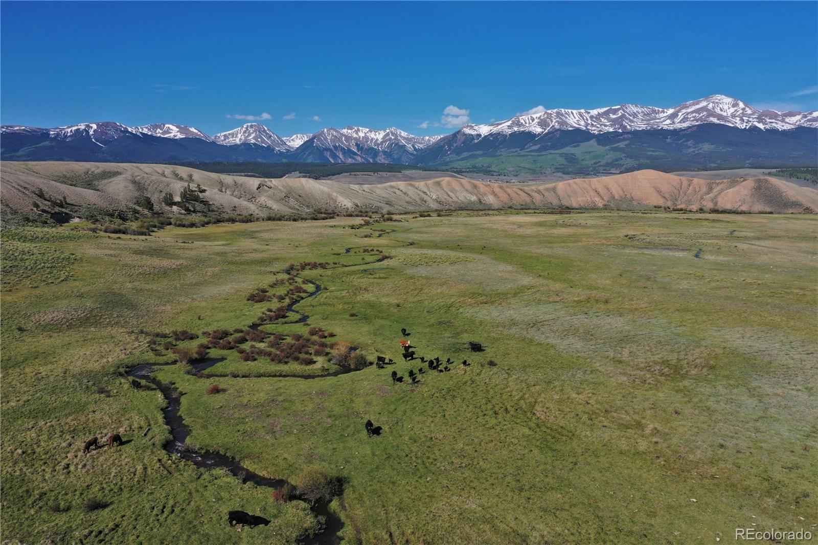 1250 County Road 55, Leadville, CO 81211 - Leadville, CO real estate listing